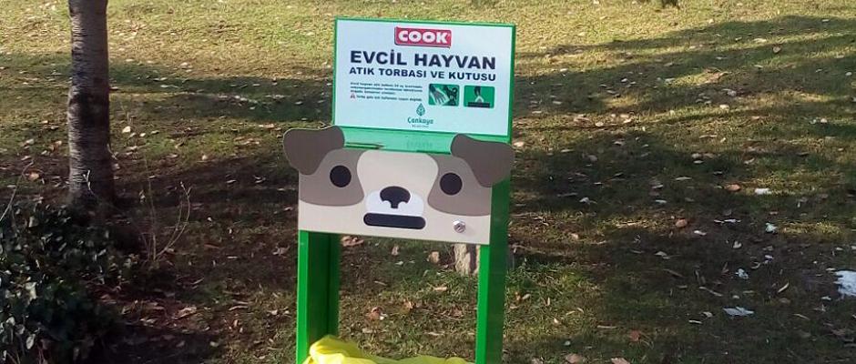 Cook ve Çankaya Belediyesi'nden örnek proje