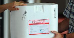 Almanya'da organ bağışında vahim tablo